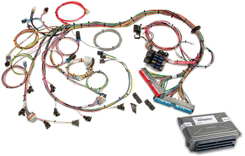 60713 - 1998-2004 GM LS1/LS6 EFI Harness (60508 w/ VATS Removed ECM)