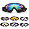 Winter Sports Anti-fog Goggles