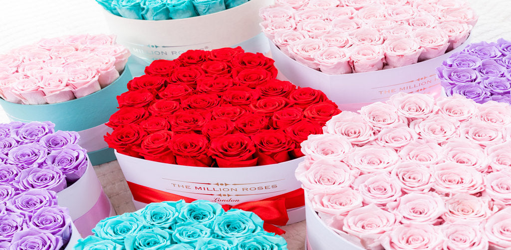 What Do Different Colour Eternity Roses Mean?