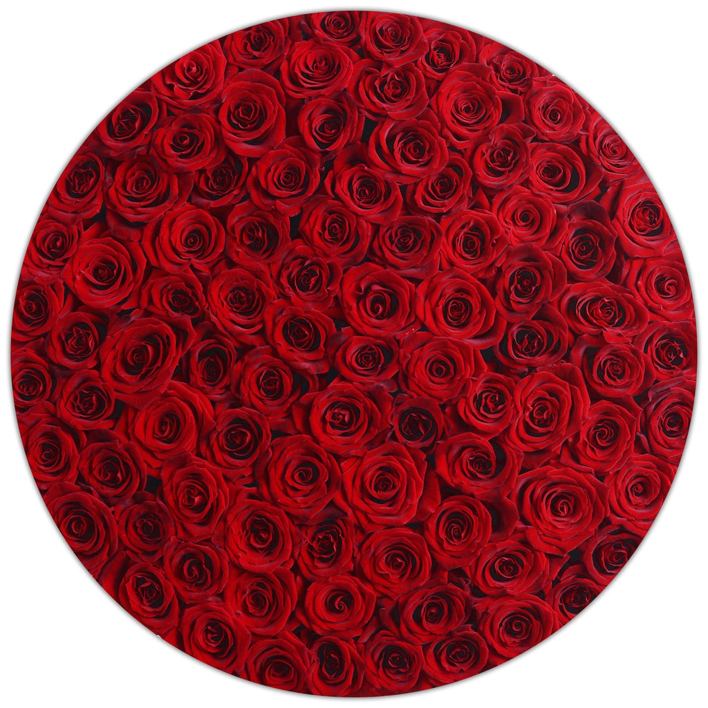 The Million Roses Europe - The Million Large Luxury Box - Red Eternity Roses - White Box Delivered Anywhere in Europe