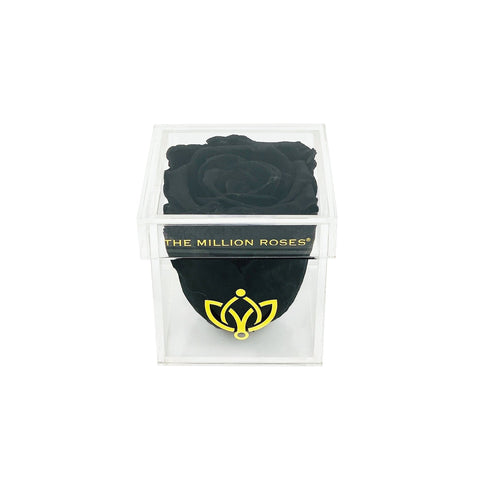 The Acrylic - Single Rose Box - Black Rose - The Million Roses Europe