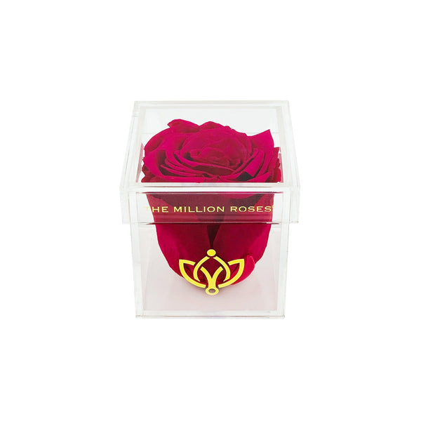 The Acrylic - Single Rose Box - Hot Pink Rose - The Million Roses Europe