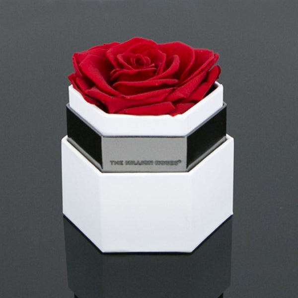 one in a million™ - hexagon white box / nickel ring / red rose - The Million Roses Europe