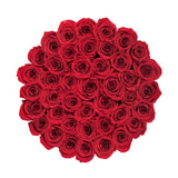 Medium - Red Eternity Roses - White Box