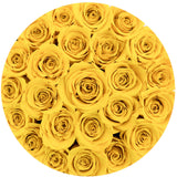 Small - Light Yellow Roses - Black Box - The Million Roses Europe - Italia, France, Österreich, Deutschland, Espana