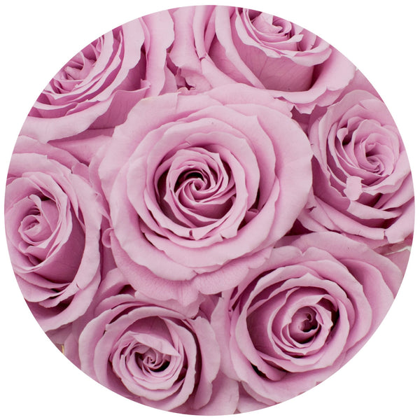 The Million Basic - Candy Pink Eternity Roses - Black Box