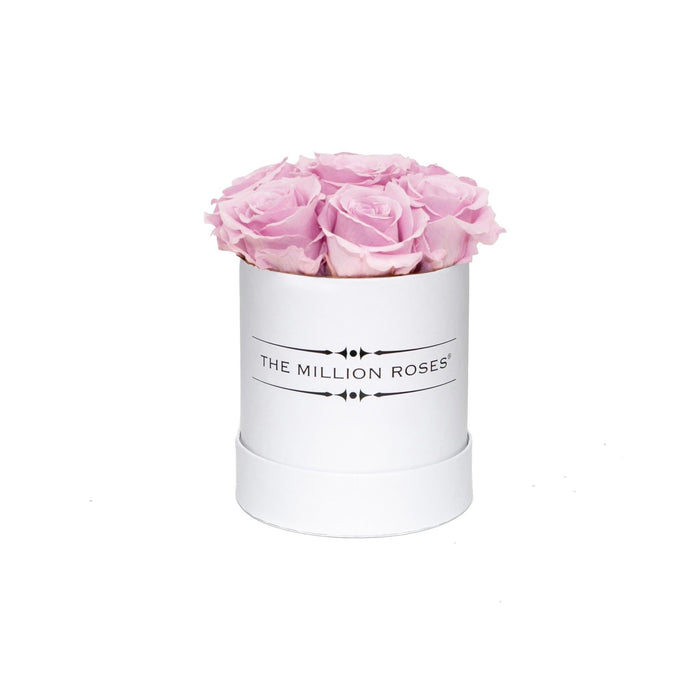 The Million Basic - Soft Pink Eternity Roses - White Box