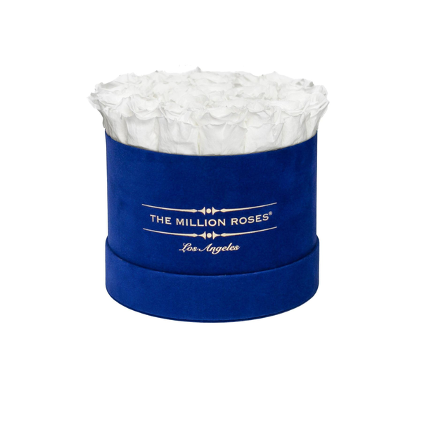 Classic - Royal Blue Suede Box - White Eternity Roses - The Million Roses Europe