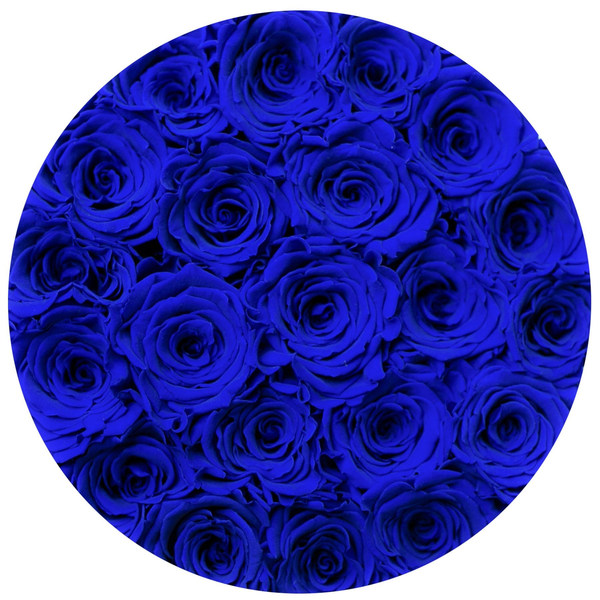 Classic - Royal Blue Suede Box - Royal Blue Eternity Roses - The Million Roses Europe