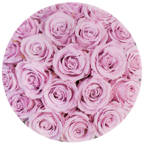 Classic - Hot Pink Suede Box - Light Pink Eternity Roses (Dome) - The Million Roses Europe