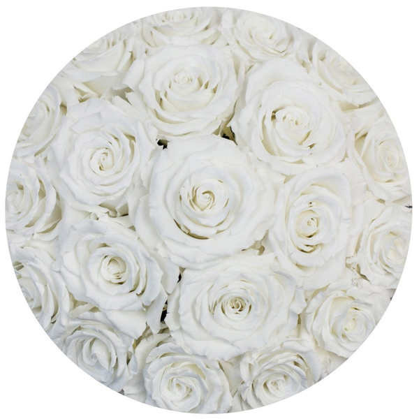 Classic - Light Pink Suede Box - White Eternity Roses (Dome) - The Million Roses Europe