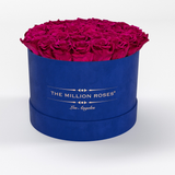 Premium - Hot Pink Eternity Roses - Royal Blue Suede Box - The Million Roses Europe