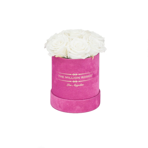 The Million Basic - Hot Pink Suede Box - White Eternity Roses - The Million Roses Europe