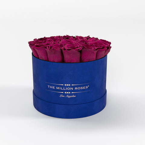Classic - Royal Blue Suede Box - Hot Pink Eternity Roses - The Million Roses Europe