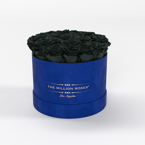 Classic - Royal Blue Suede Box - Black Eternity Roses - The Million Roses Europe