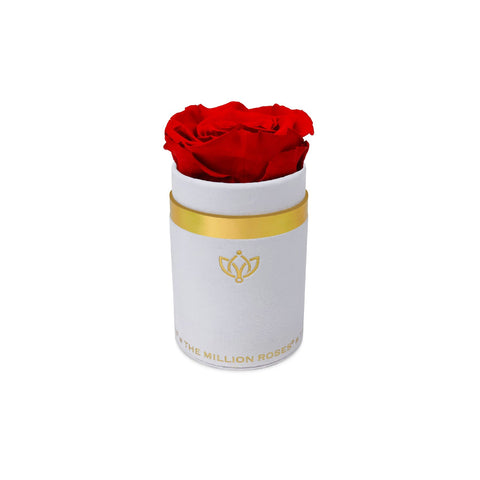 Single Rose Box - White Suede - The Million Roses Europe