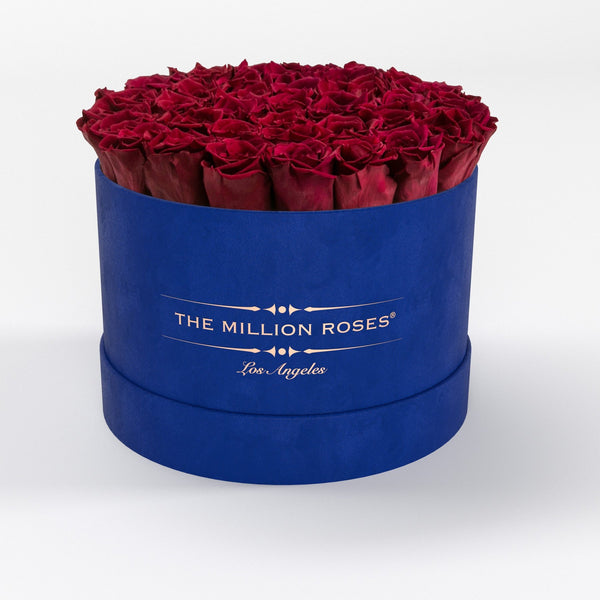 Premium - Red Eternity Roses - Royal Blue Suede Box - The Million Roses Europe