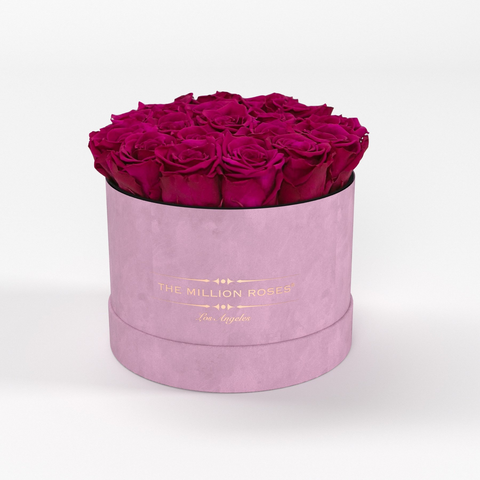 Classic - Light Pink Suede Box - Hot Pink Eternity Roses - The Million Roses Europe