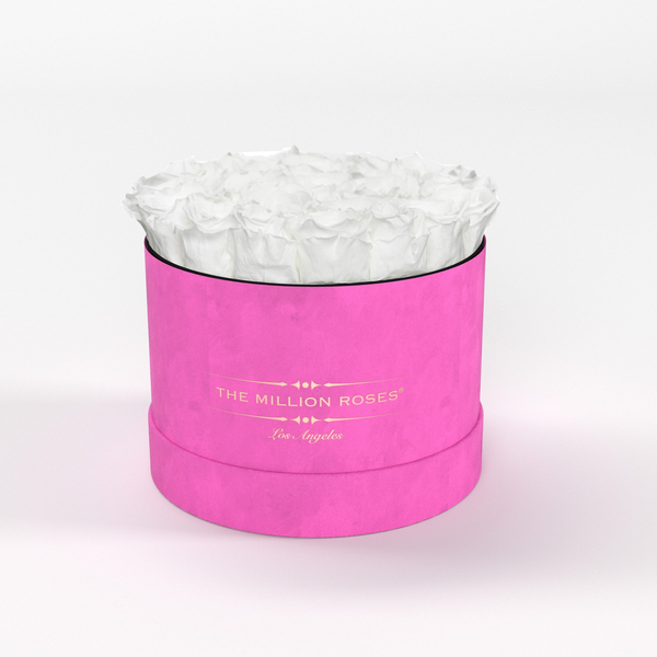 Classic - Hot Pink Suede Box - White Eternity Roses - The Million Roses Europe