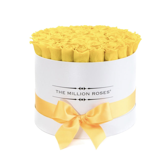 Medium - Yellow Eternity Roses - White Box