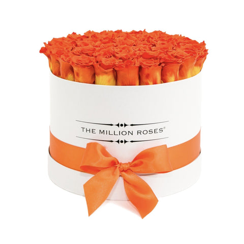 Premium - Hermès Orange Eternity Roses - White Box - The Million Roses Europe