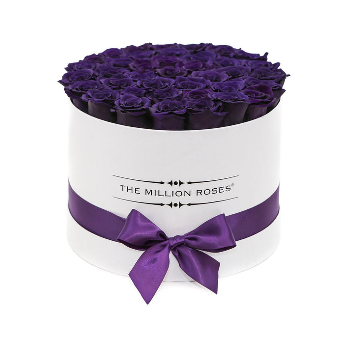 Medium - Deep Purple Eternity Roses - White Box