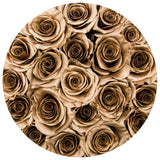 Classic - Hot Pink Suede Box - Gold Eternity Roses - The Million Roses Europe