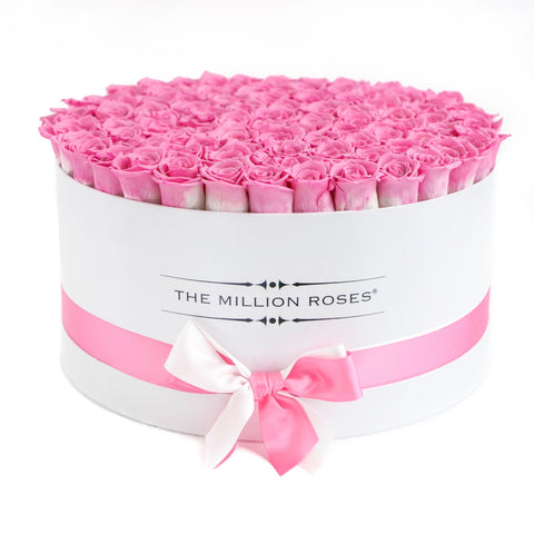 The Million Deluxe Box - Candy Pink Eternity Roses - White Box - The Million Roses Europe