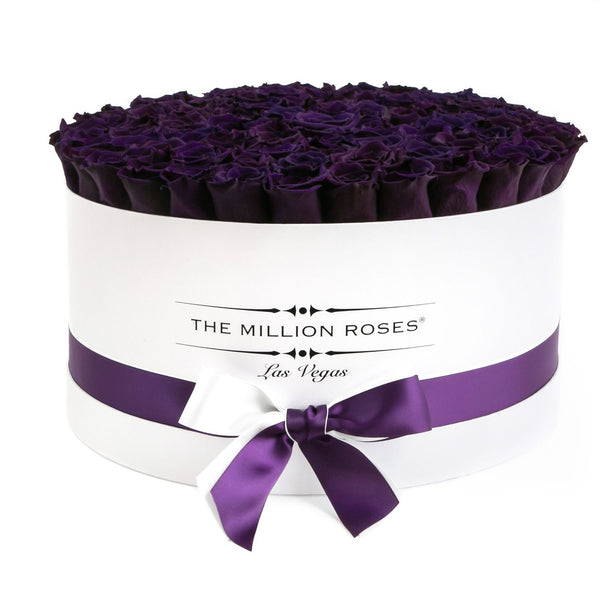 The Million Large Luxury Box - Deep Purple Eternity Roses - White Box