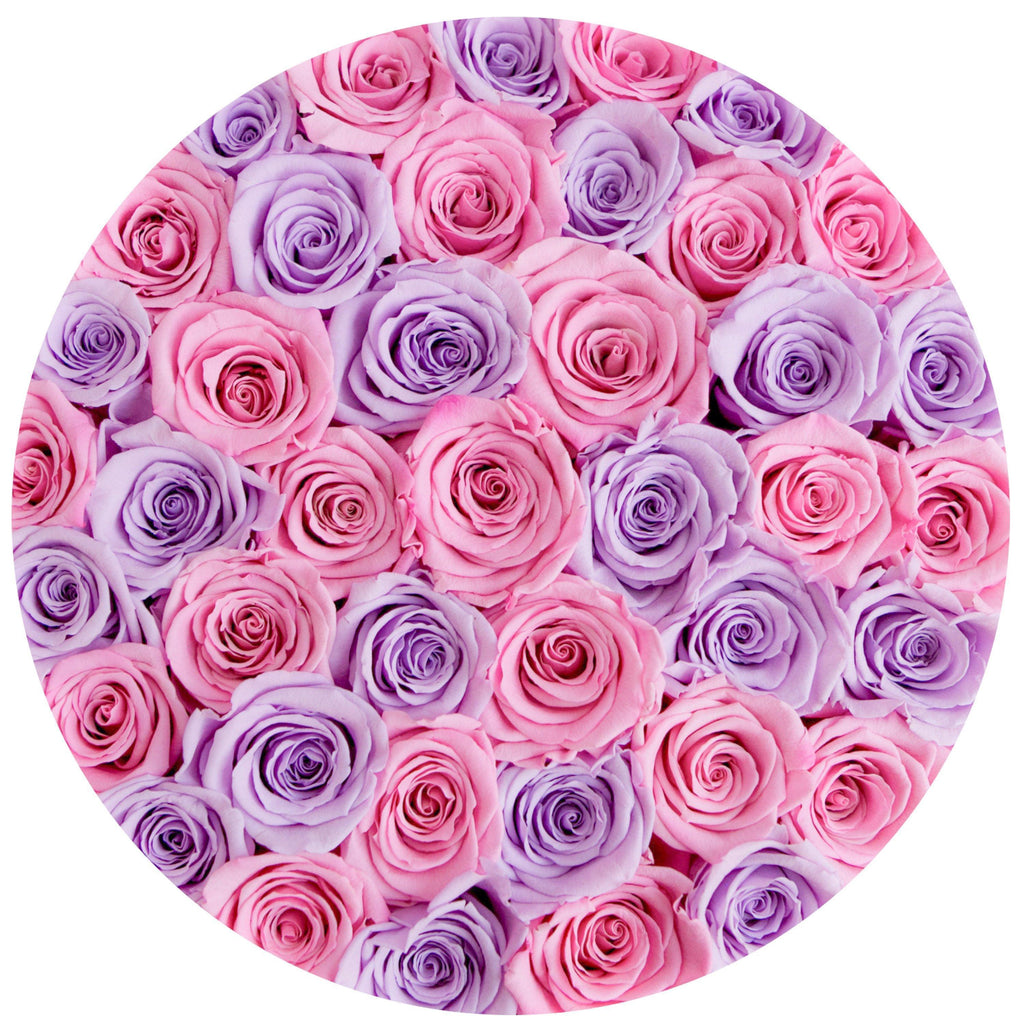 The Million Roses Europe - Medium - Candy Pink & Lavender Eternity Roses - Black Box Delivered Anywhere in Europe