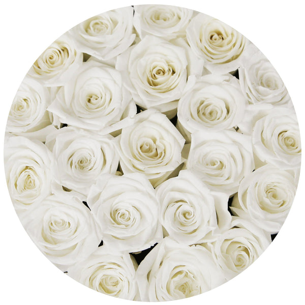 Small - White Eternity Roses - Black Box - The Million Roses Europe - Italia, France, Österreich, Deutschland, Espana