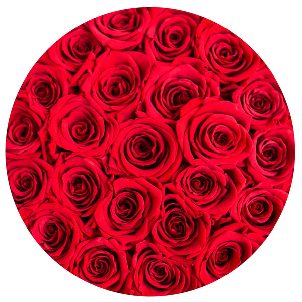The Million Roses Europe - Small - Red Eternity Roses - White Box Delivered Anywhere in Europe