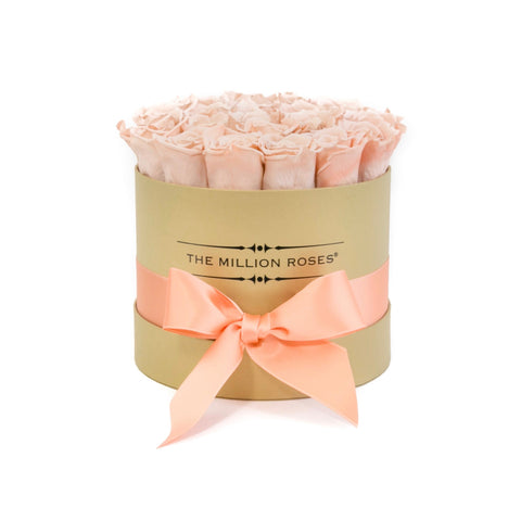 Classic - Peach Eternity Roses - Gold Box - The Million Roses Europe