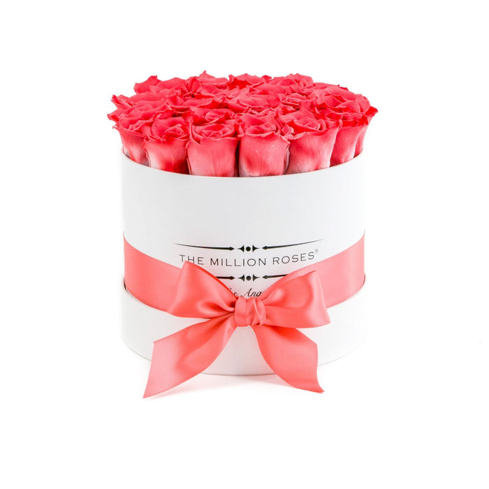 Small - Coral Eternity Roses - White Box