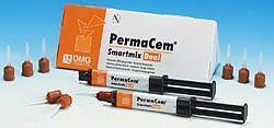 PermaCem Smartmix Dual Syringe Tips, Package of 50 tips.