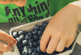 Best Foods to Help Your Child Focus