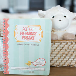 Perfect Pregnancy Planner