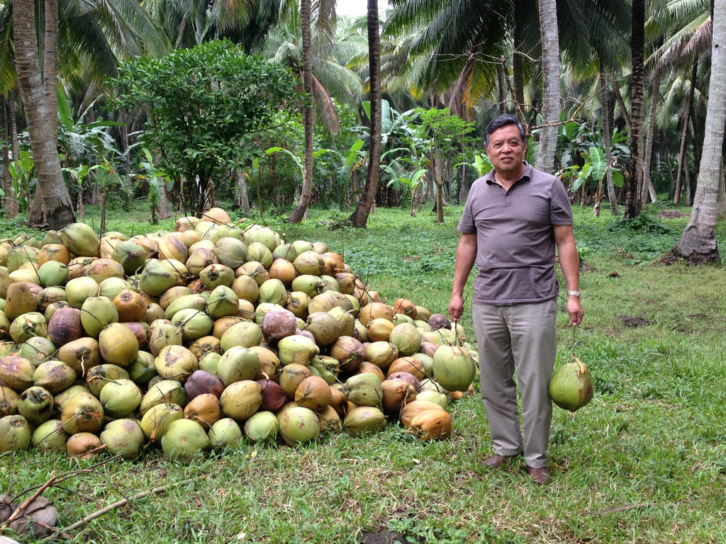 Organic Hand-Picked Coconuts