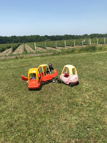 Play area for kids overlooking the grapes in Hinterland Winery in Prince Edward County
