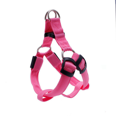 LED Night Time Safety Harness
