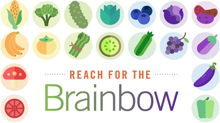 Introduction to Brainbow Blueprint by Dr. Leslie Korn