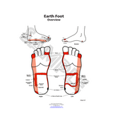 ER Earth Foot Chart by Dr. Mary Jo Ruggieri