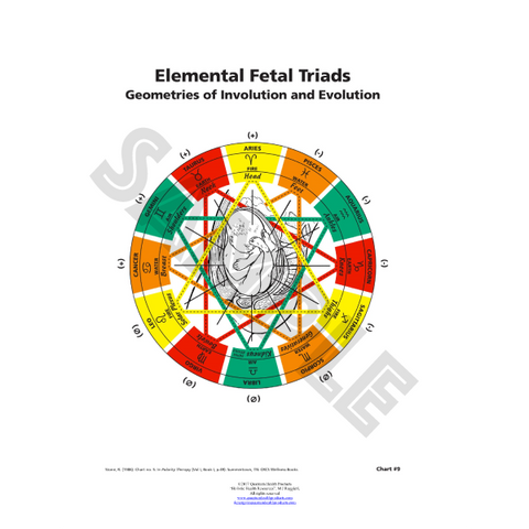 Elemental Fetal Triads Chart by Dr. Mary Jo Ruggieri