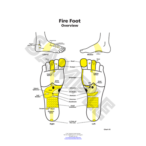 ER Fire Foot Chart by Dr. Mary Jo Ruggieri