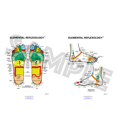 Elemental Reflexology Chart & Lateral Medial Chart by Dr. Mary Jo Ruggieri