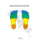 ER Zones of the Foot by Dr. Mary Jo Ruggieri