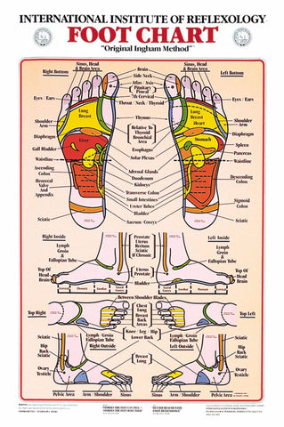 Reflexology Charts - Ingham Method