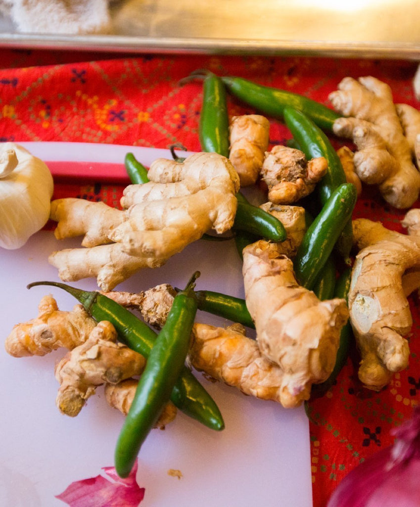 THE FIRE OF GINGER: HERBAL REMEDIES WITH GINGER - WILD ROOTS