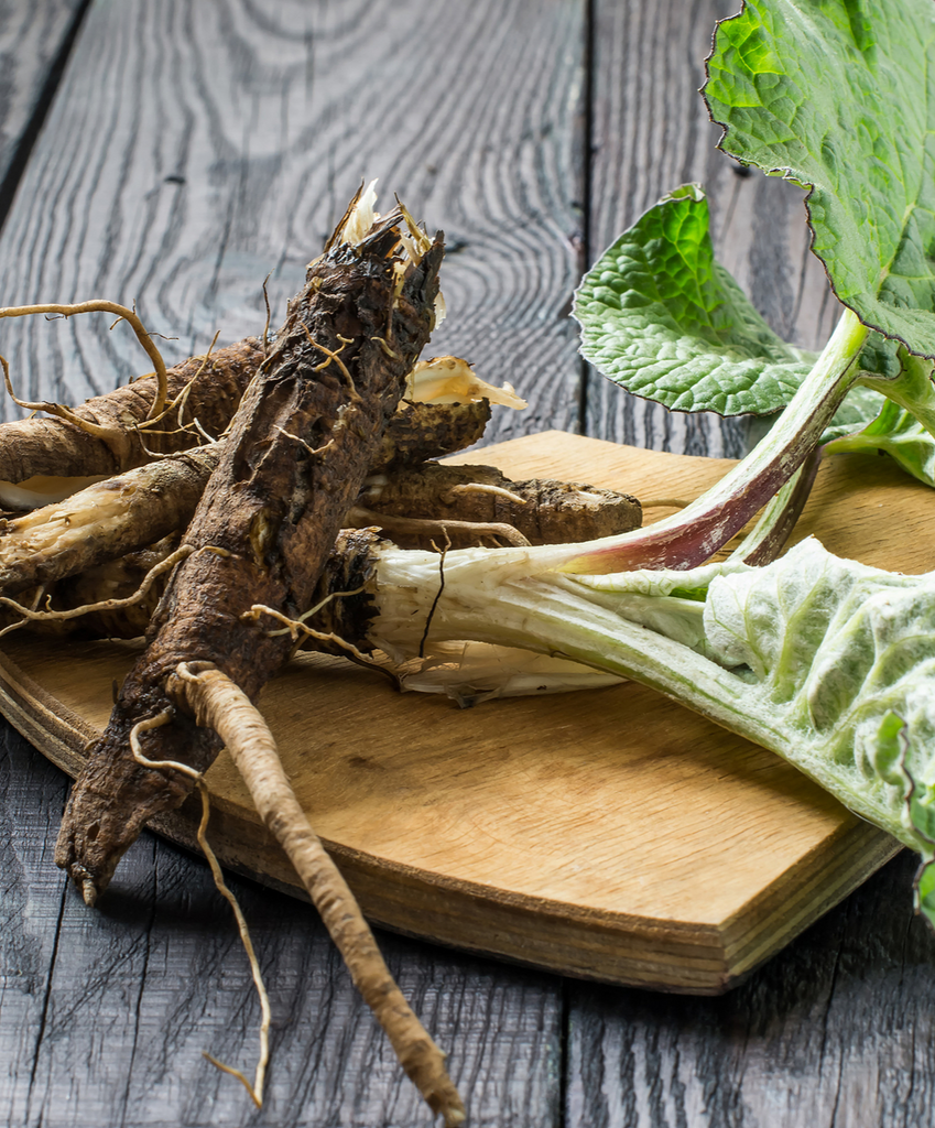 BALANCING BURDOCK: SKIN, URINARY, & DIGESTION