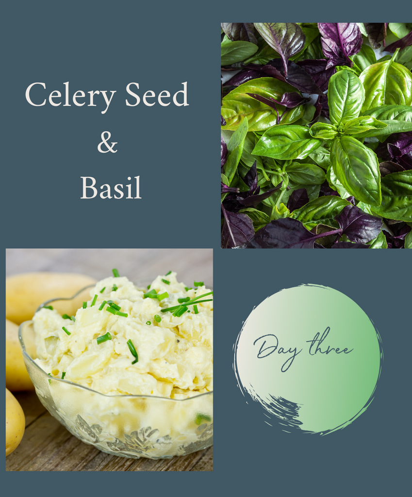 5-DAY HERBAL RESET CHALLENGE: DAY 3 CELERY SEED & BASIL